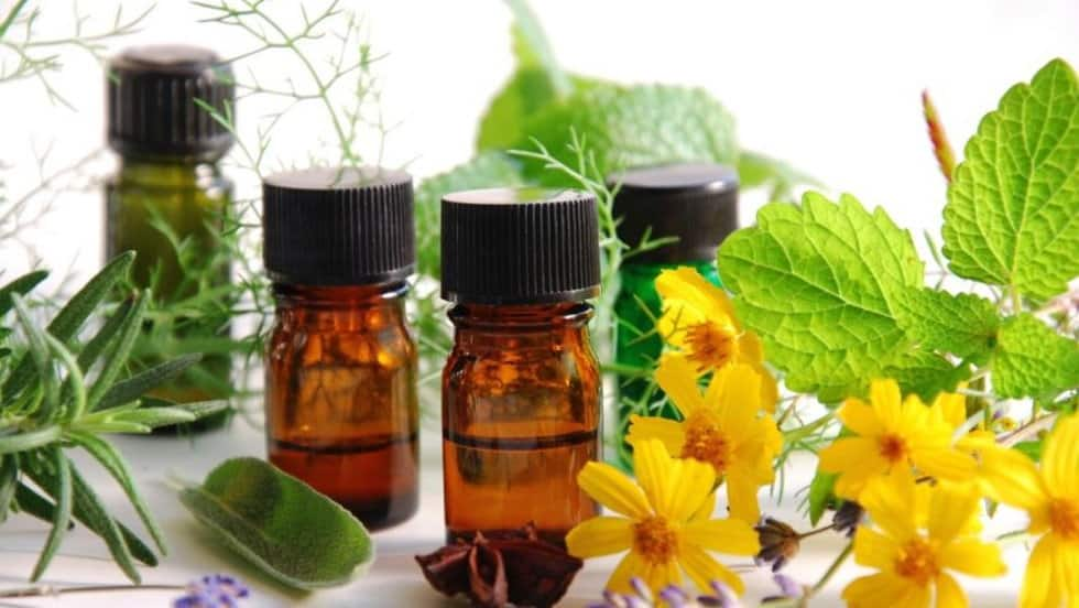 Cách khử mùi sơn dầu bằng các đồ dùng trong nhà 15